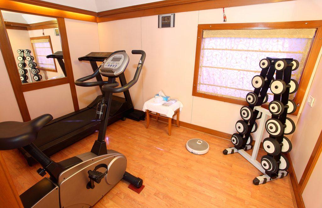 Aparate fitness acasa